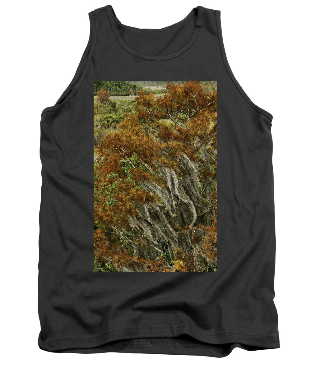 Swamp Tank Top featuring the photograph Cedars In The Fall by James Ekstrom