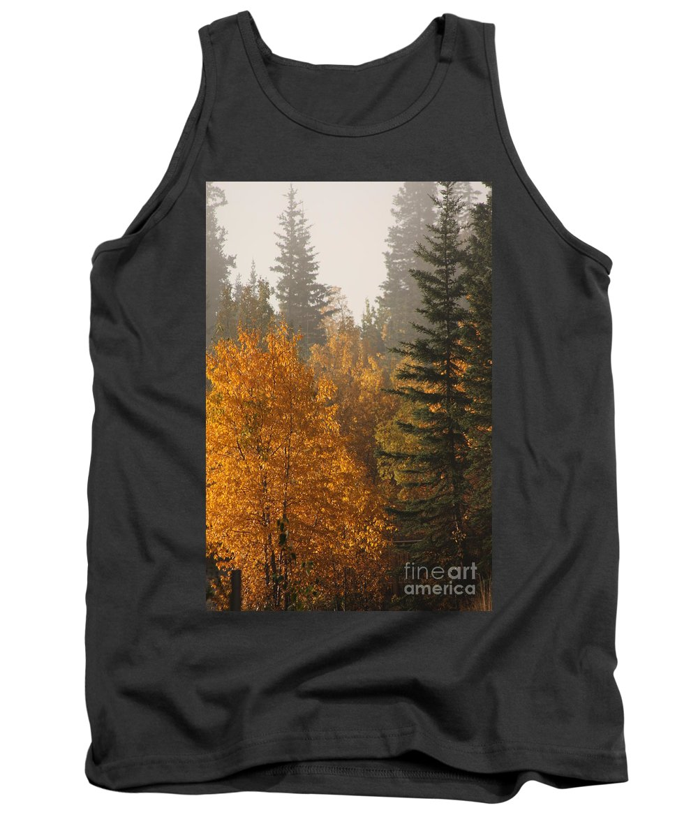 Central Park Tank Top featuring the photograph Central Park Yukon by Brian Boyle