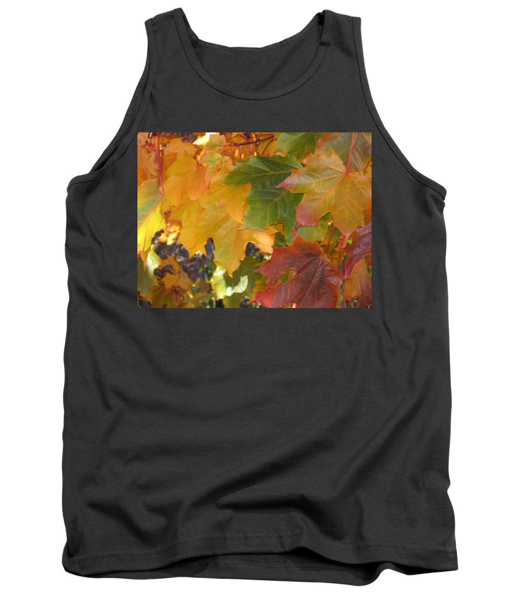 Fall Tank Top featuring the photograph Changing Times by Kimberly Maxwell Grantier