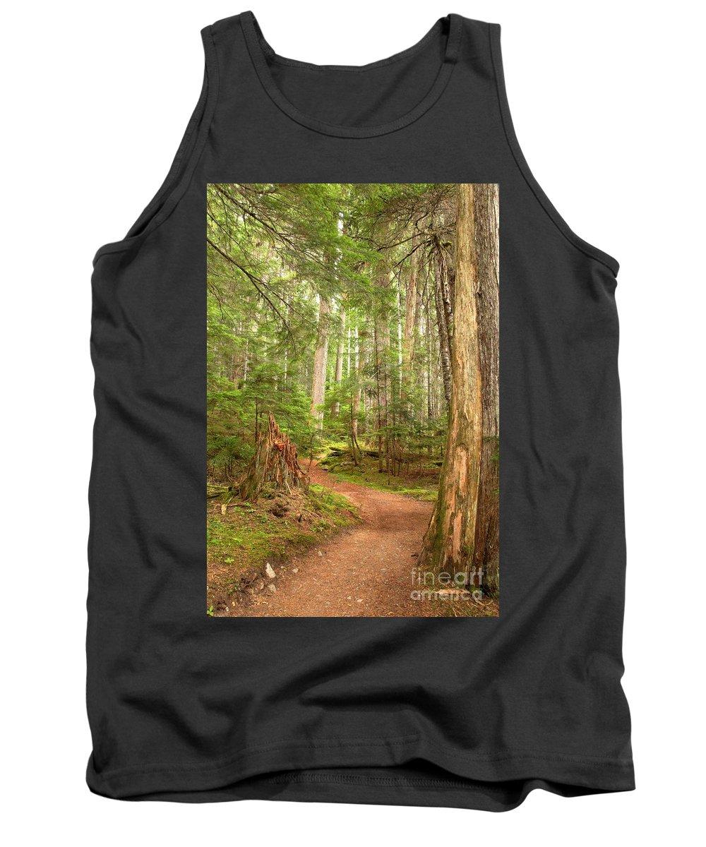 Cheakamus Rainforest Tank Top featuring the photograph Cheakamus Lake Path by Adam Jewell