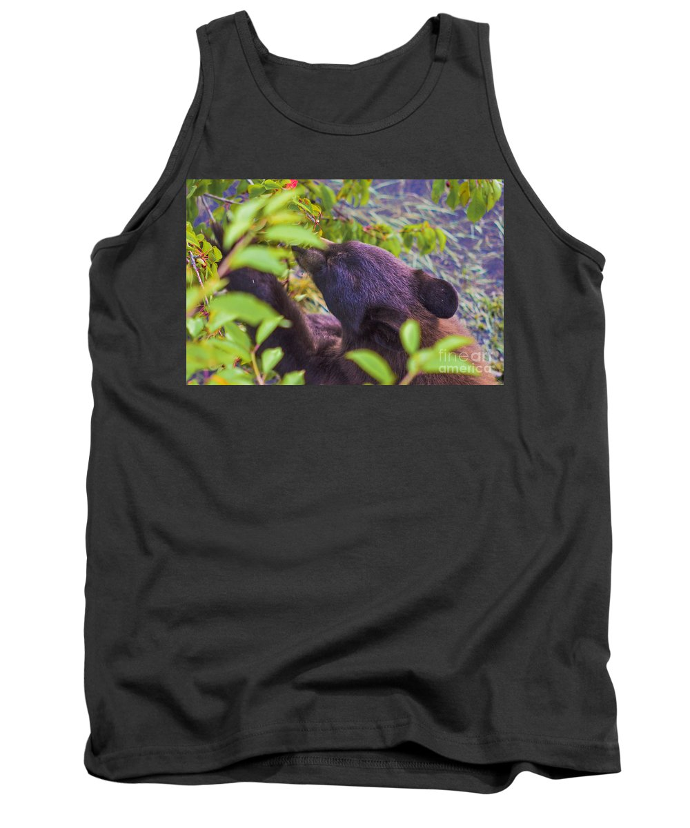 Bear Tank Top featuring the photograph Cherry Picker by Joy McAdams