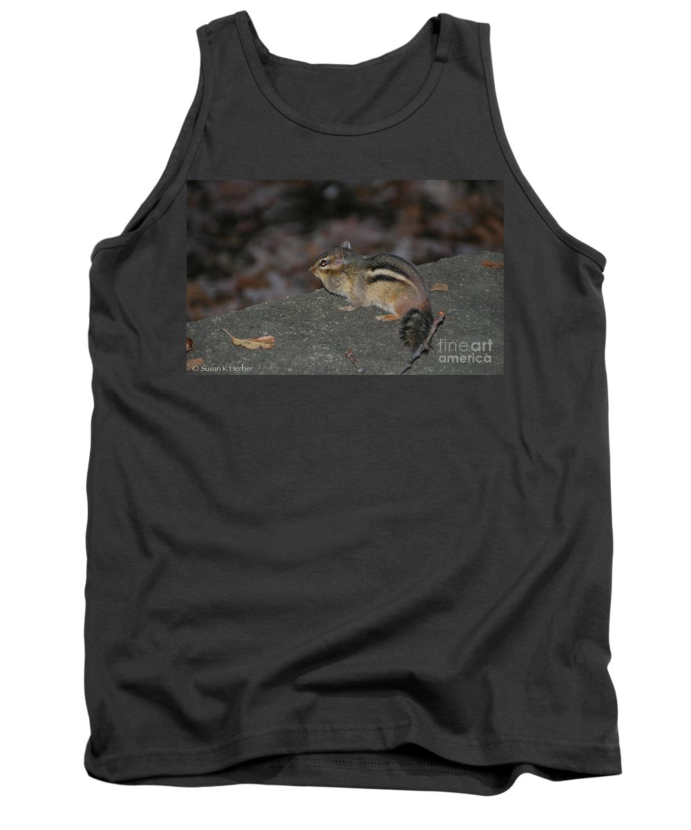 Mammal Tank Top featuring the photograph Chipper by Susan Herber