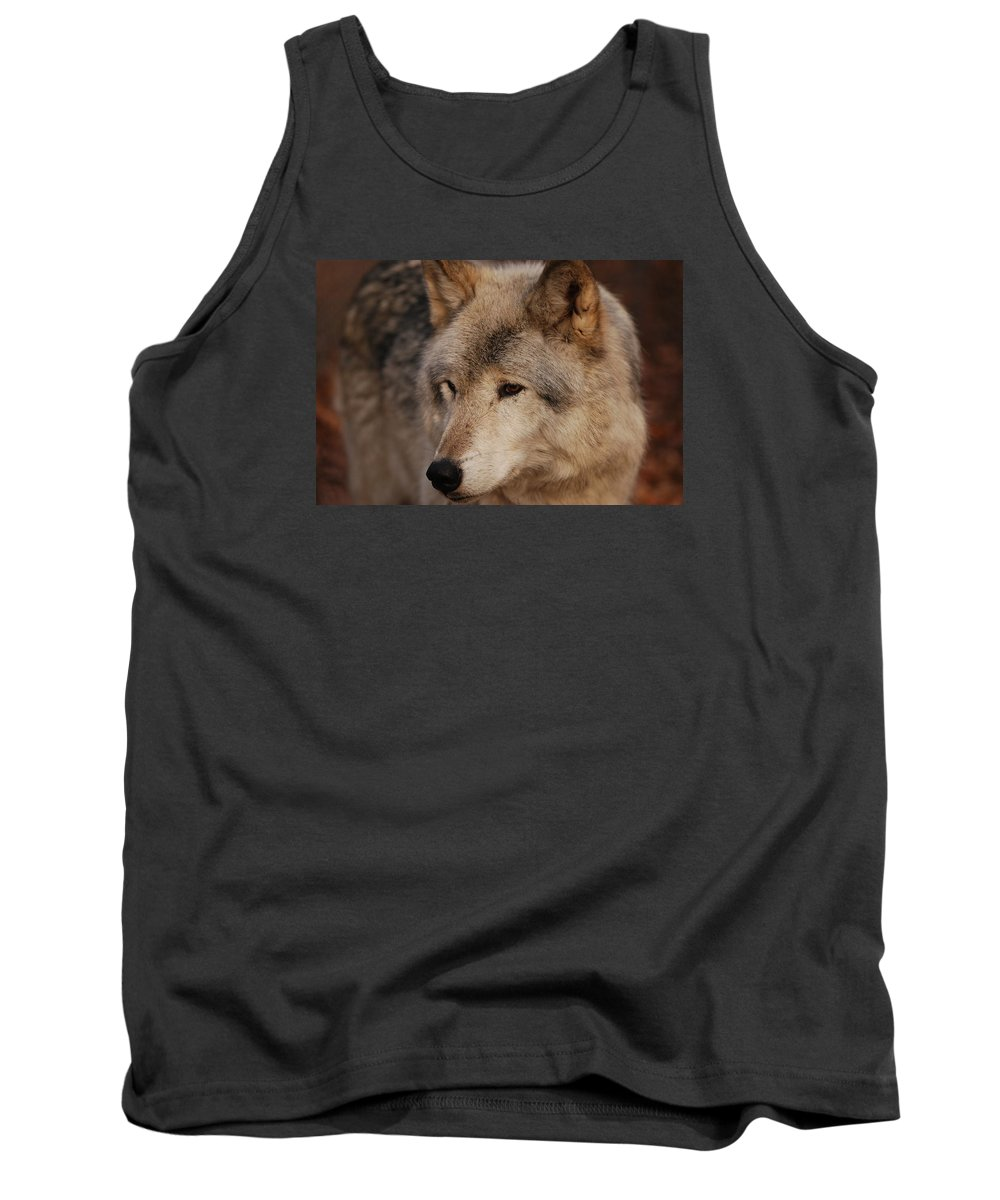 Wolf Tank Top featuring the photograph Close Up by Lori Tambakis