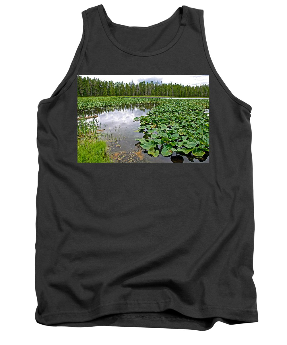 Clouds Among The Lily Pads In Swan Lake In Grand Teton National Park Tank Top featuring the photograph Clouds Among The Lily Pads In Swan Lake In Grand Teton National Park-wyoming by Ruth Hager