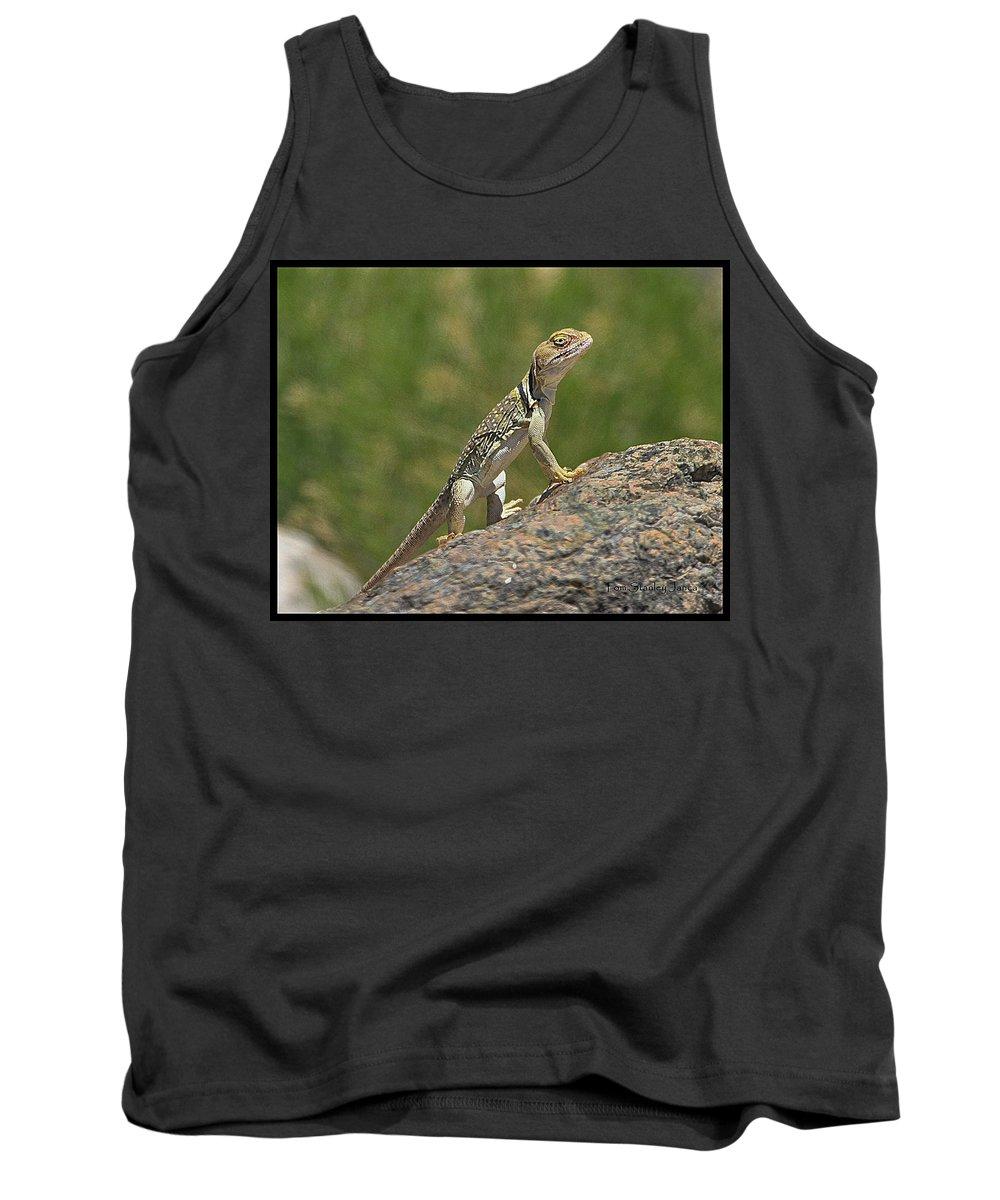 Collard Lizard Tank Top featuring the photograph Collard Lizard by Tom Janca