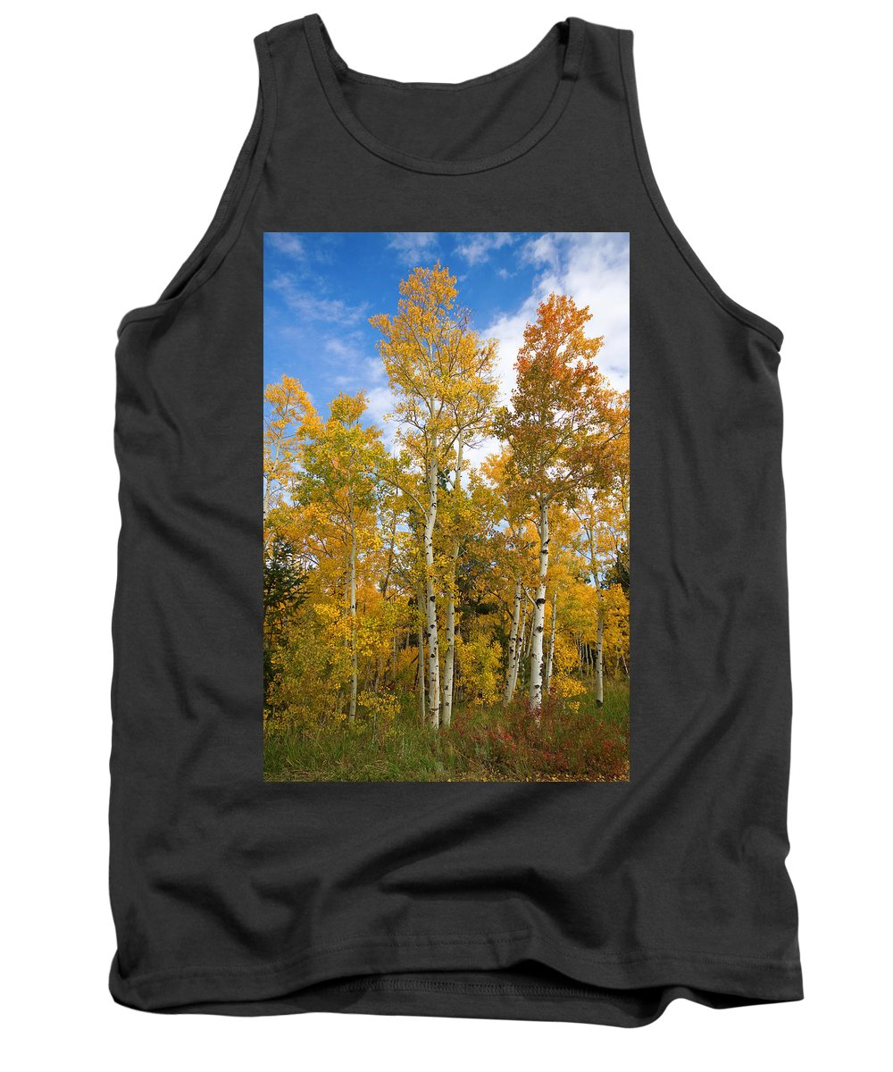 Colorful Tank Top featuring the photograph Colorado Autumn Aspens by James BO Insogna