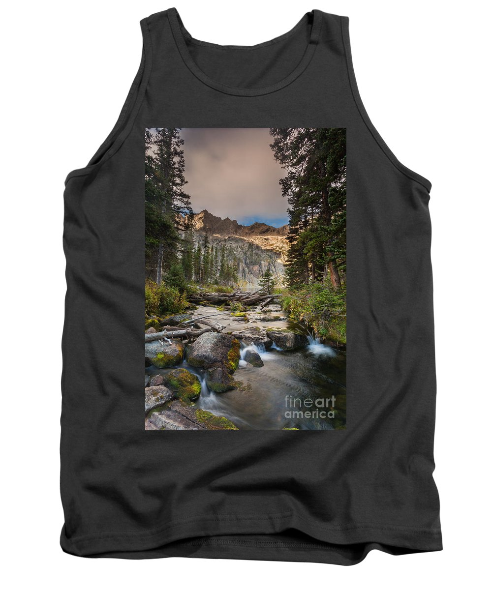 Nature Tank Top featuring the photograph Colorado Beauty by Steven Reed