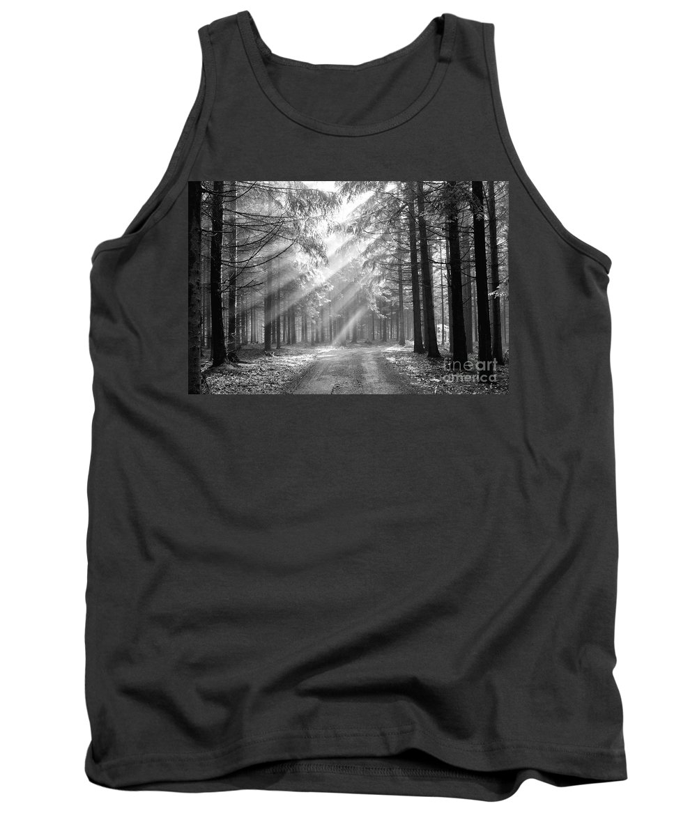 Forest Tank Top featuring the photograph Coniferous Forest In Early Morning by Michal Boubin