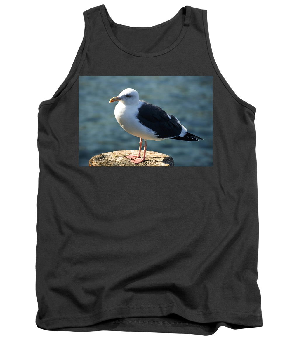 Americas Tank Top featuring the photograph Contemplating Life Of A Sea Gull by Roderick Bley