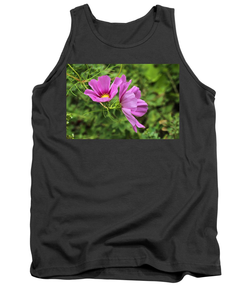 Cosmos Tank Top featuring the photograph Cosmos Tickles Me Pink - Cosmos Caudatus by Mother Nature