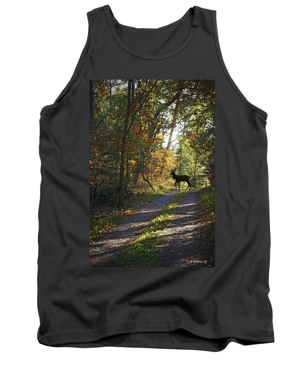 2d Tank Top featuring the photograph Country Lane by Brian Wallace