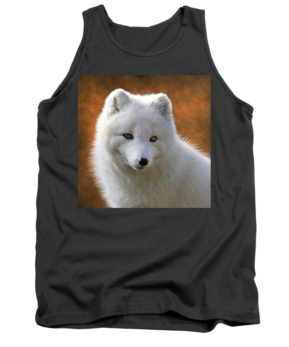 Coy Arctic Fox Tank Top featuring the photograph Coy Arctic Fox by Wes and Dotty Weber