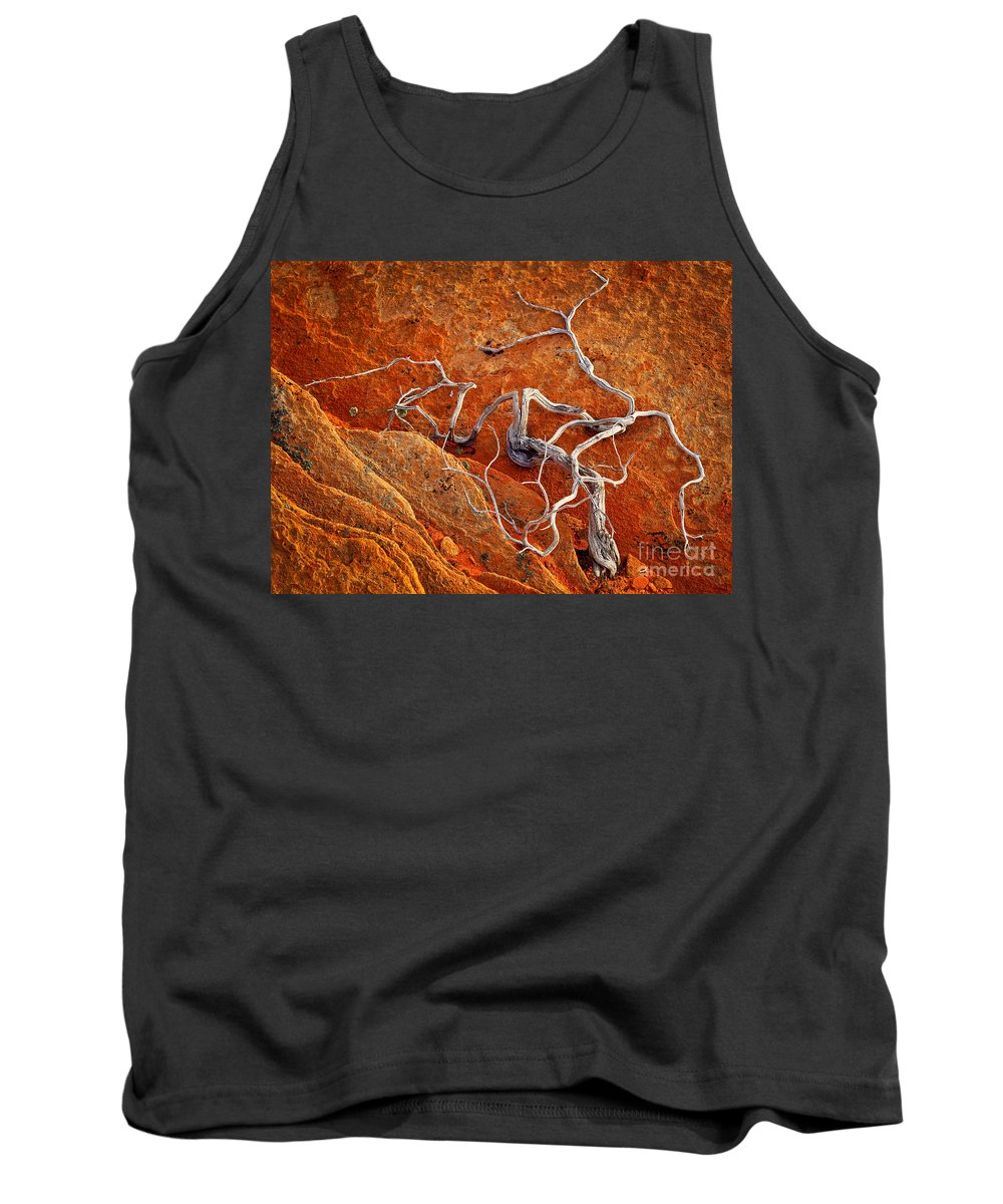 America Tank Top featuring the photograph Creepy Crawly by Inge Johnsson