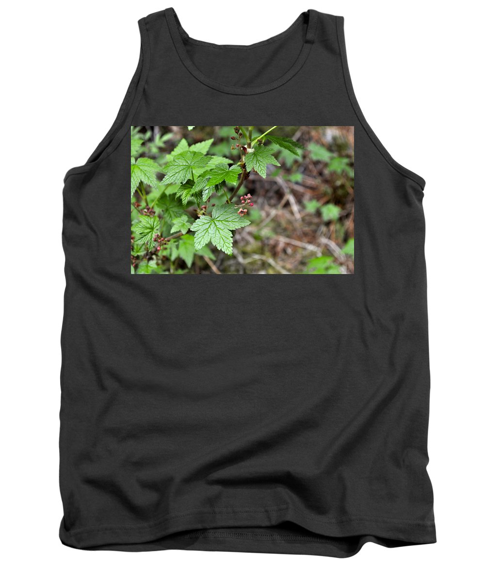 Currant Tank Top featuring the photograph Currant Flower by Cathy Mahnke