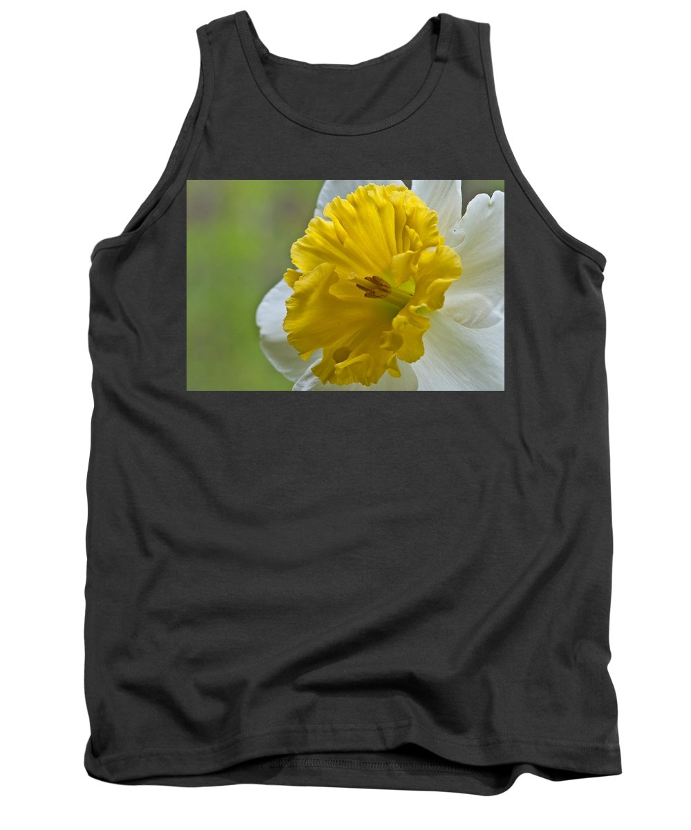 Daffodil Tank Top featuring the photograph Daffodil by Randy Walton