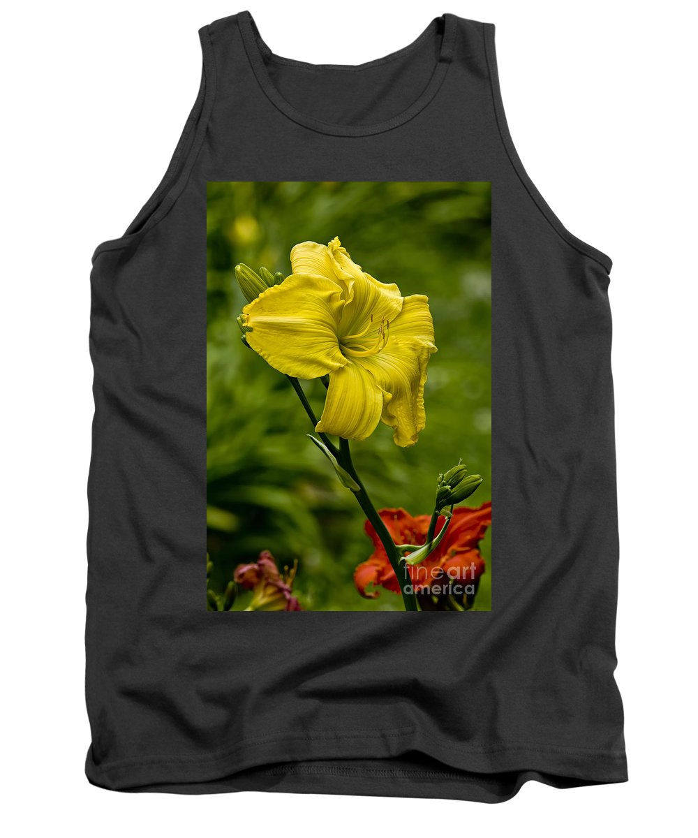 Daylily Tank Top featuring the photograph Daylily Picture 469 by World Wildlife Photography
