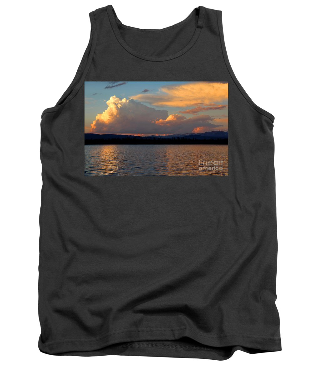Water Tank Top featuring the photograph Days End by Jemmy Archer