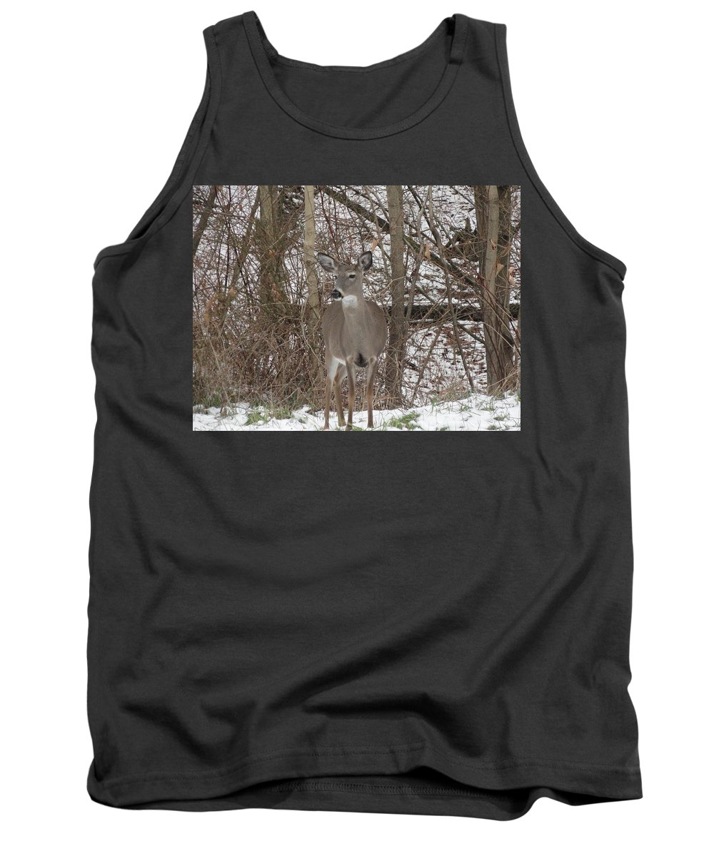 Deer Tank Top featuring the photograph Deer Of Wonder by Stephanie Irvin