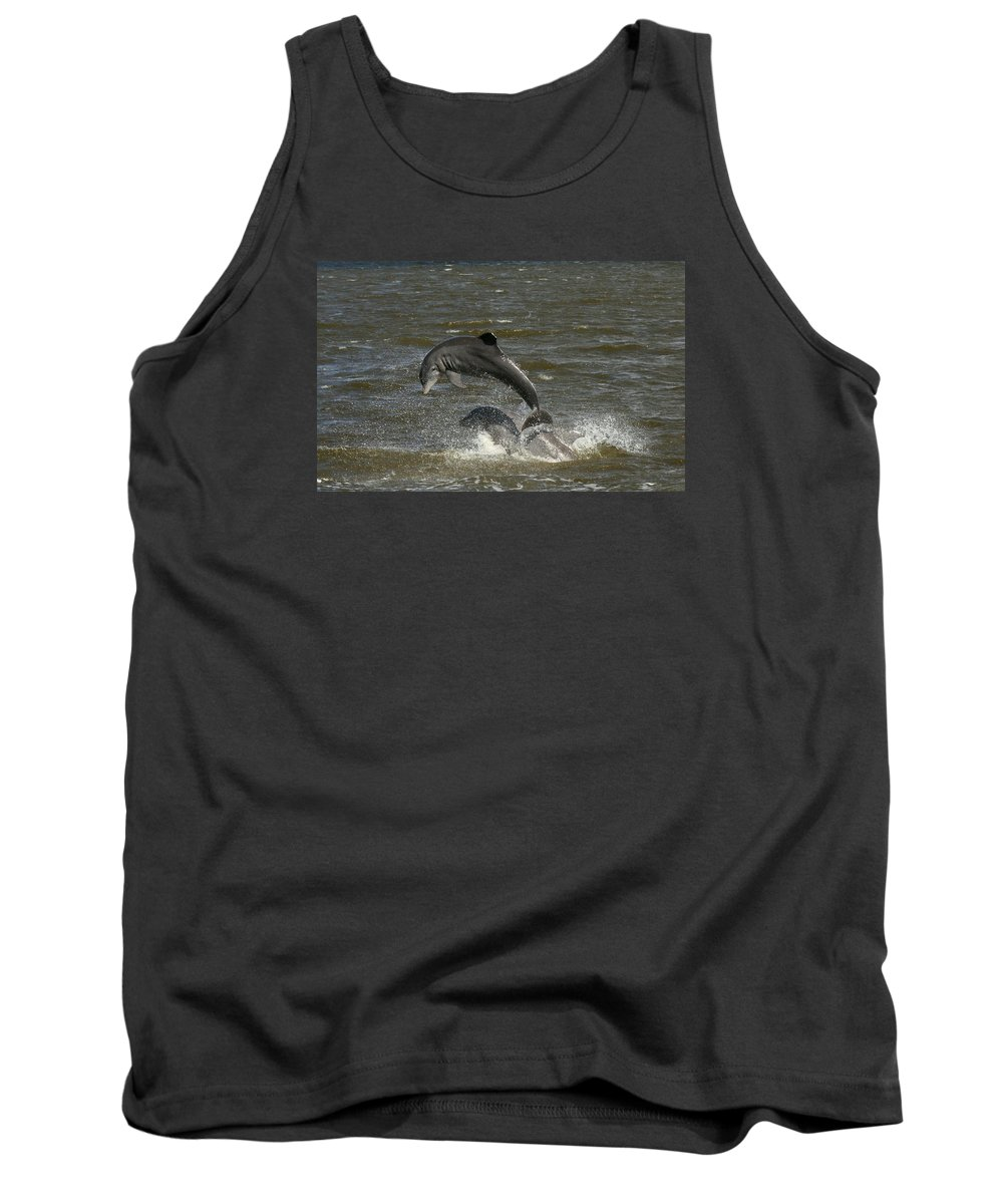 Dolphin Tank Top featuring the photograph Dolphin by Christiane Schulze Art And Photography