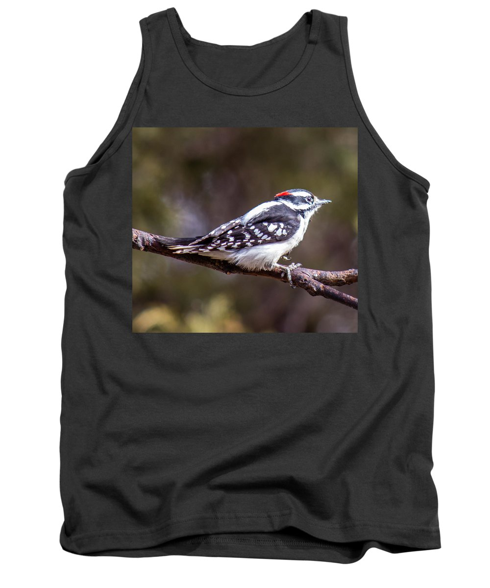 Downy Woodpecker Tank Top featuring the photograph Downy Woodpecker by Chad Rowe