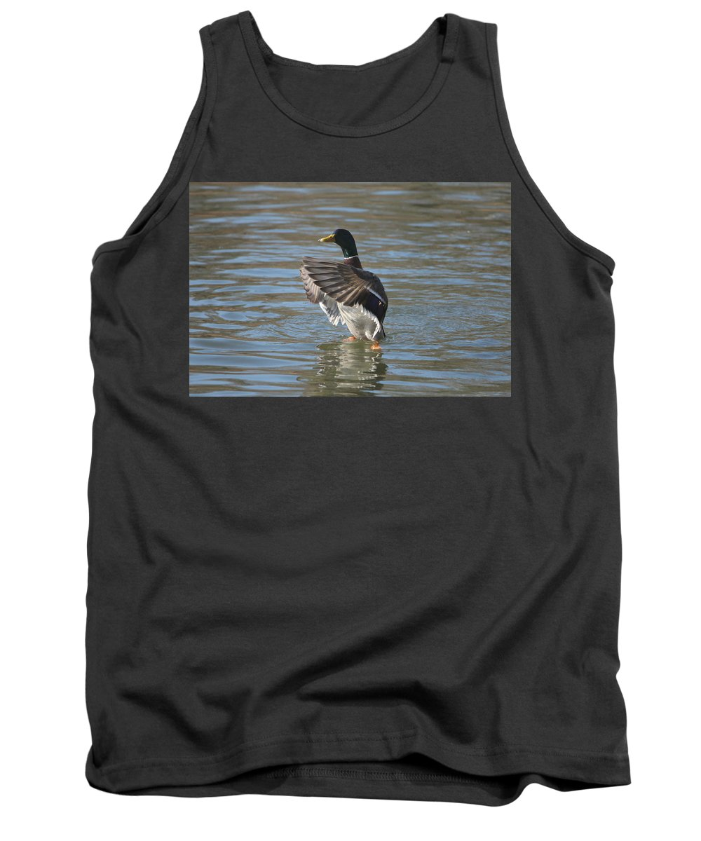 Movement Tank Top featuring the photograph Drake by Heike Hultsch