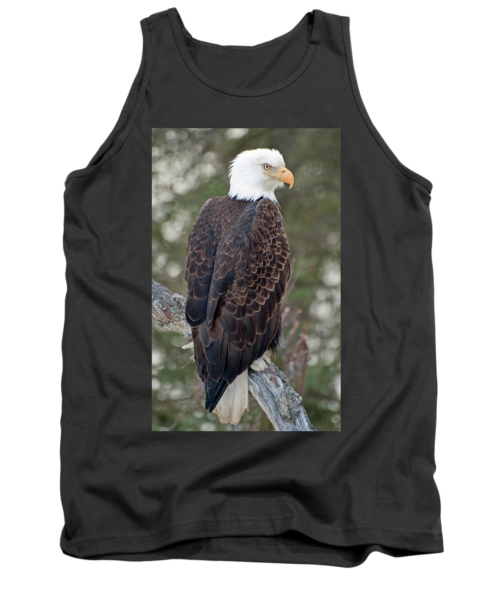 Alaska Tank Top featuring the photograph Eagle by Clint Pickarsky