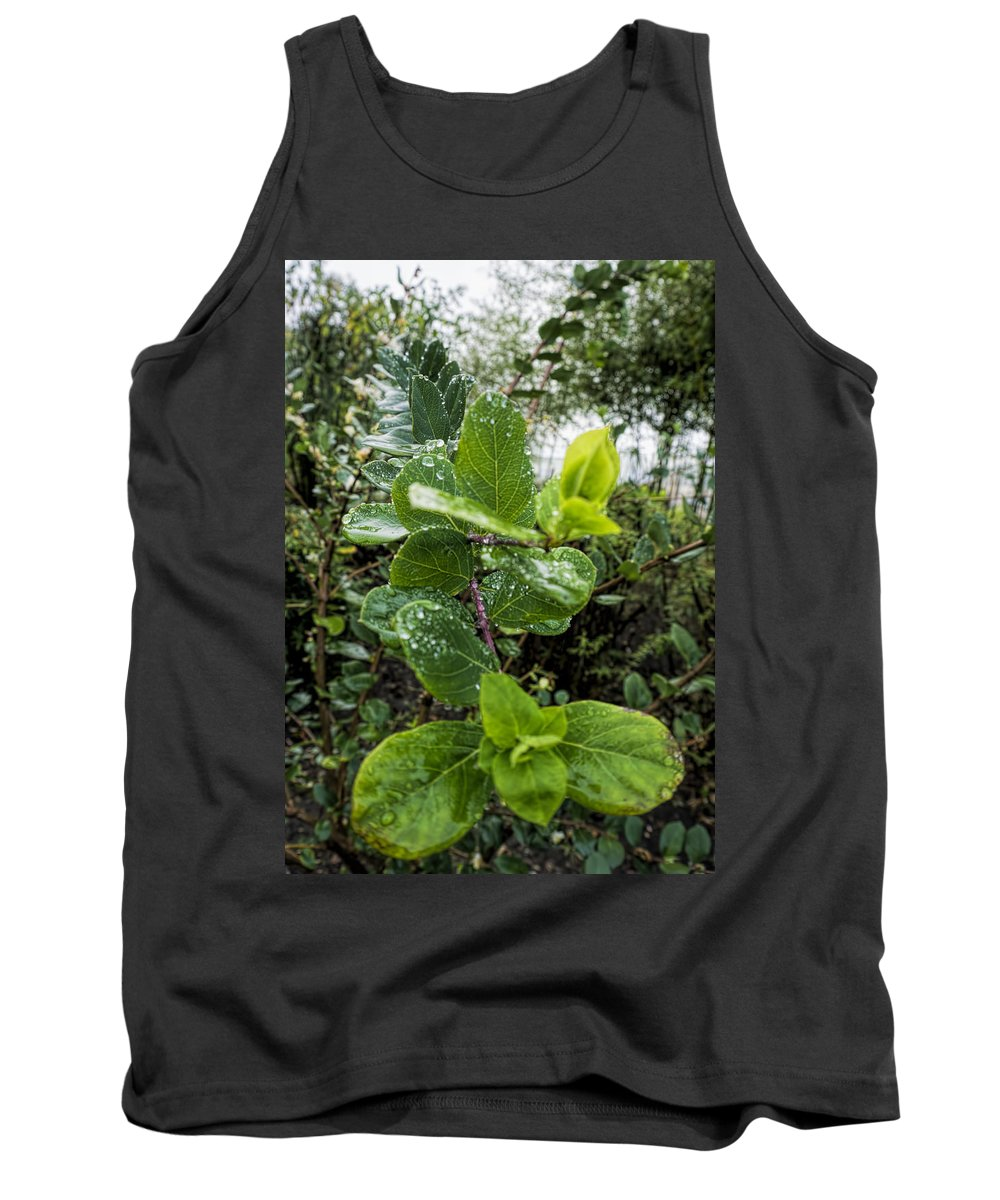 Tank Top featuring the photograph Early Rain by Cathy Anderson