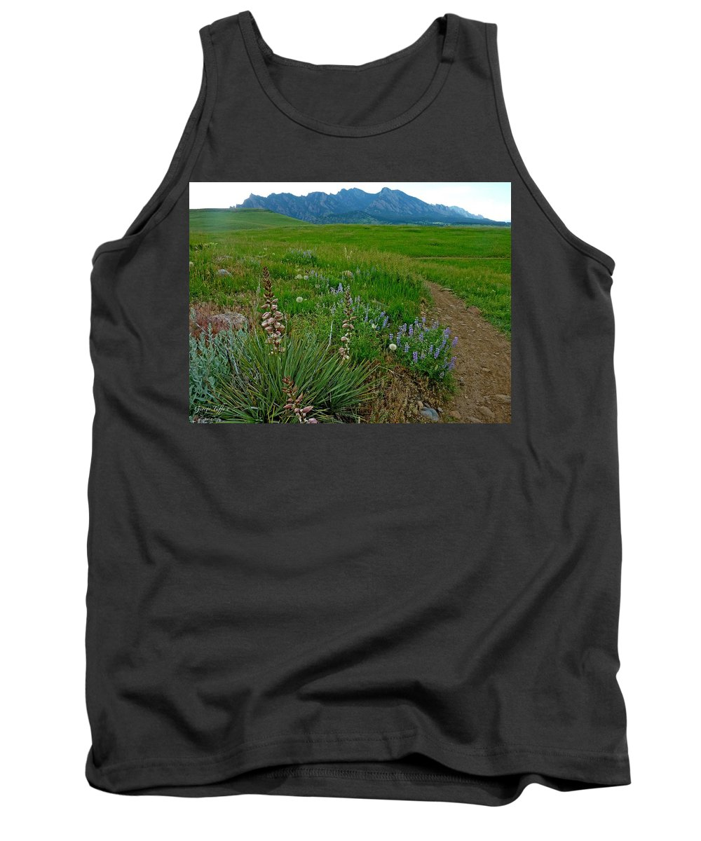 Nature Photography Tank Top featuring the photograph Early Summer Walk by George Tuffy
