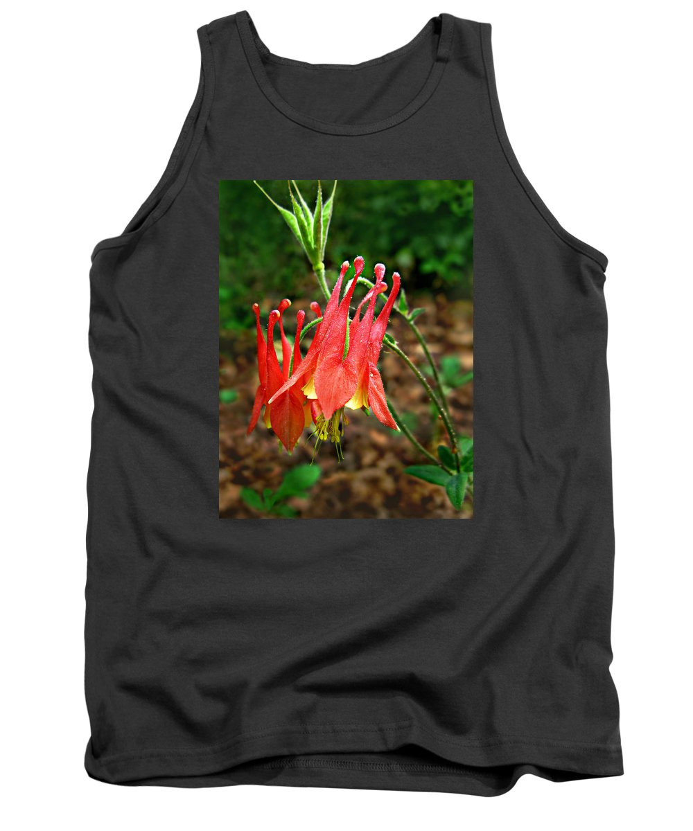 Aquilegia Canadensis Tank Top featuring the photograph Wild Eastern Columbine by William Tanneberger
