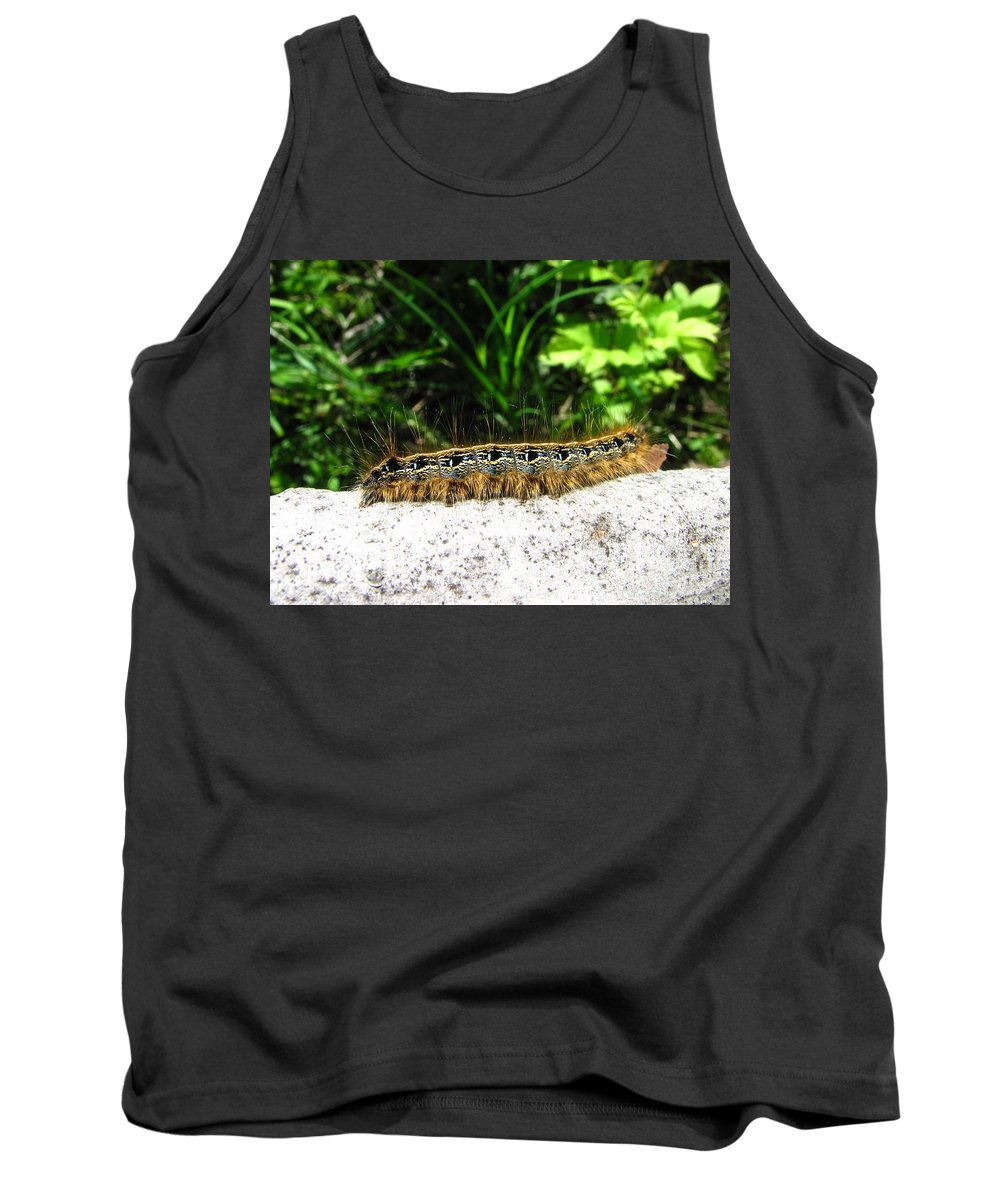 Eastern Tent Caterpillar Prints Colorful Caterpillar Prints Common Caterpillar Images Entomology Biodiversity Nature Tank Top featuring the photograph Eastern Tent Caterpillar by Joshua Bales