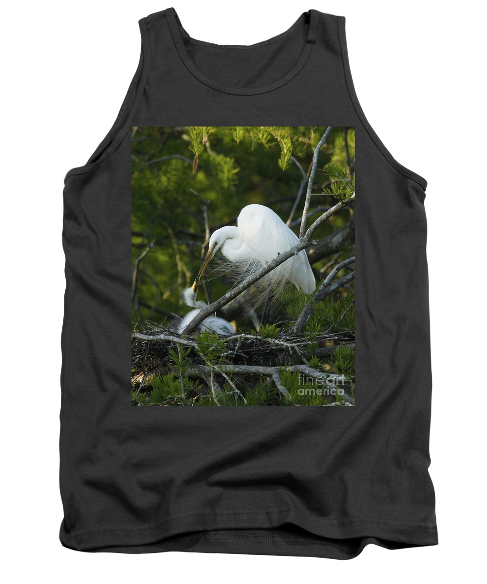 Egret Bird Photography Tank Top featuring the photograph Louisiana Egret With Babies In Swamp by Luana K Perez