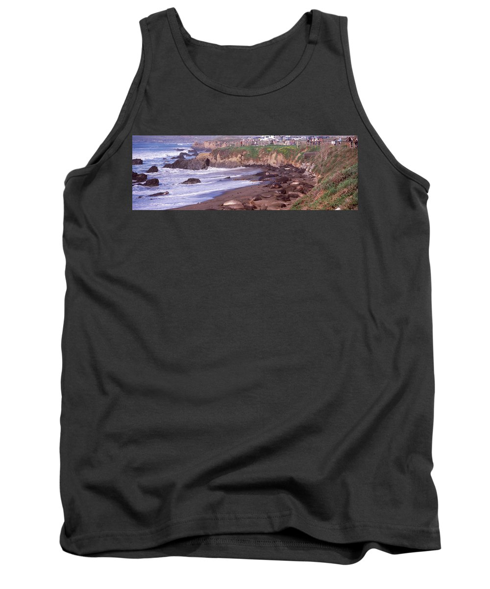 Photography Tank Top featuring the photograph Elephant Seals On The Beach, San Luis by Panoramic Images