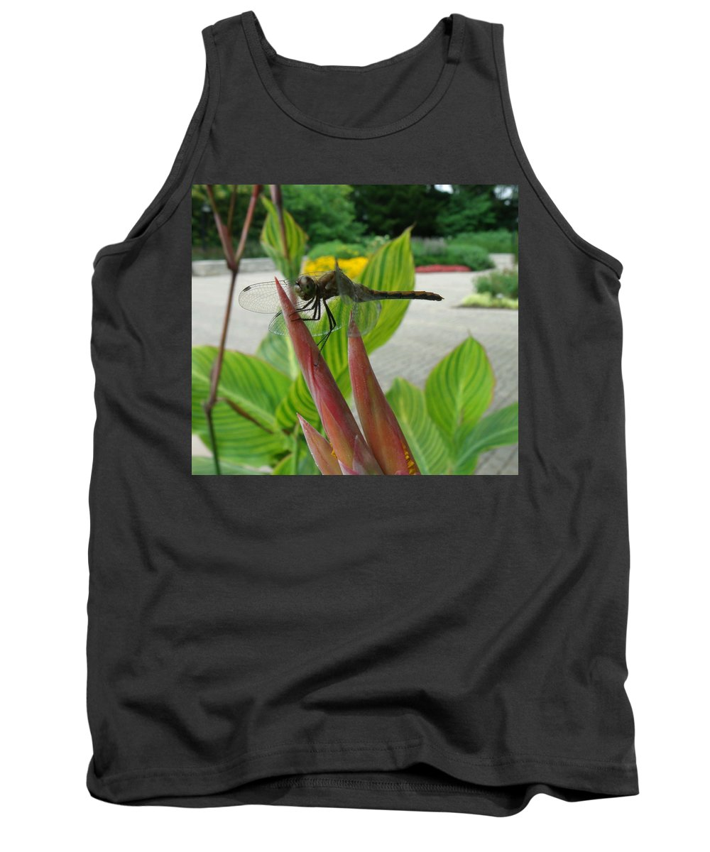 Dragonfly Tank Top featuring the photograph Elmo by Erin Rednour