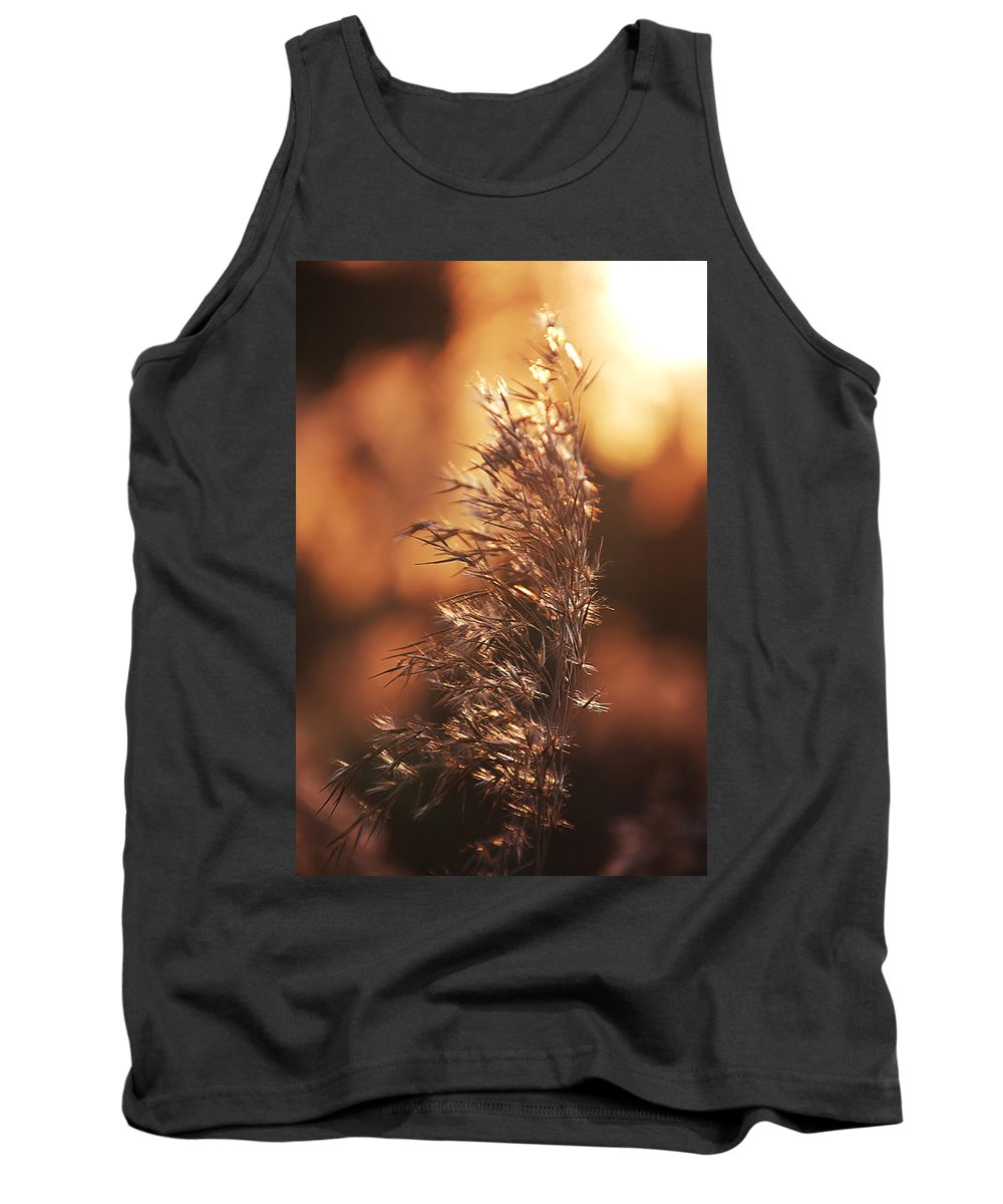 Evening Tank Top featuring the pyrography Evening by Steffen Gierok