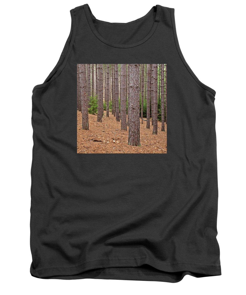 Conifer Tank Top featuring the photograph Evergreen Infinity by John Stephens