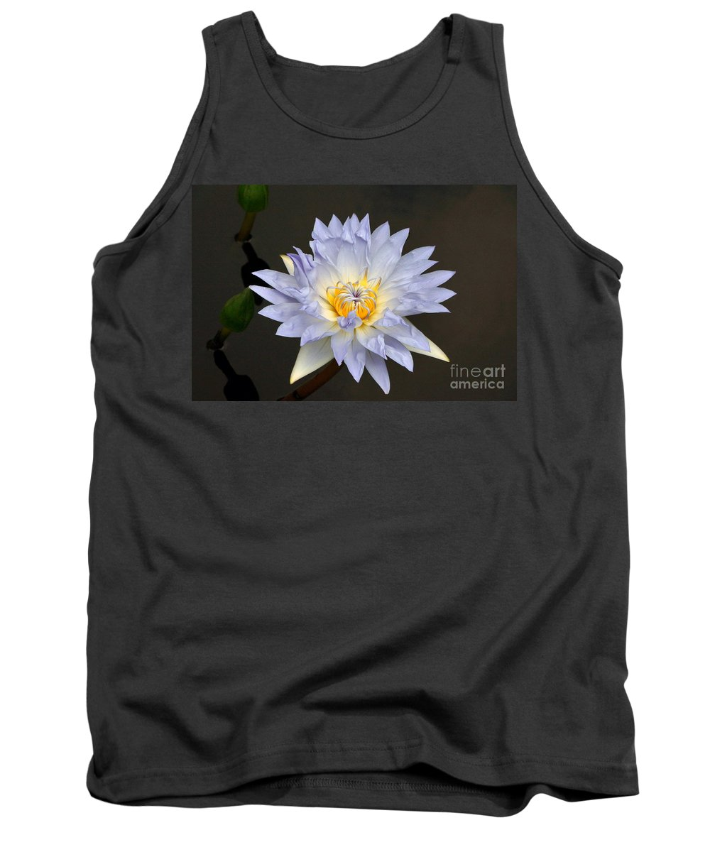 Lavender Tropical Waterlily Tank Top featuring the photograph Exquisite Lavender Waterlily by Byron Varvarigos