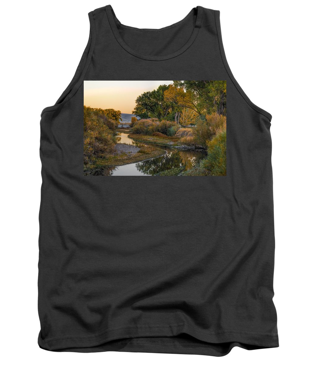 Autumn Tank Top featuring the photograph Fall Colors by Maria Coulson