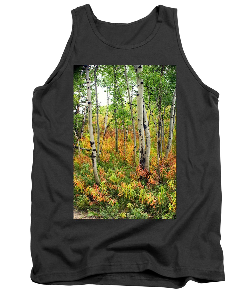 Grand Teton National Park Tank Top featuring the photograph Fall In The Tetons by Marty Koch