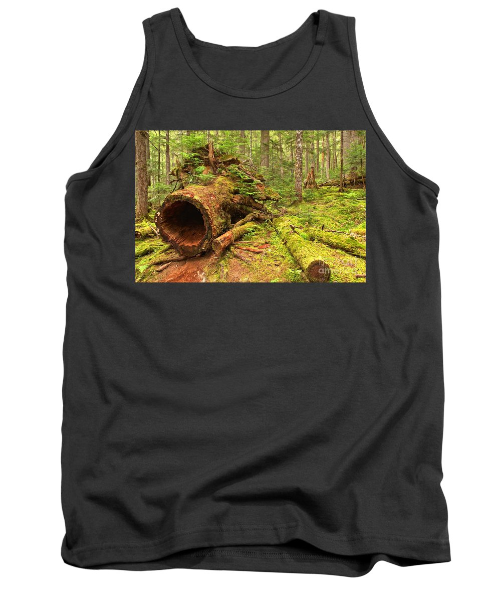 Old Growth Cedar Tank Top featuring the photograph Fallen Rainforest Giant by Adam Jewell