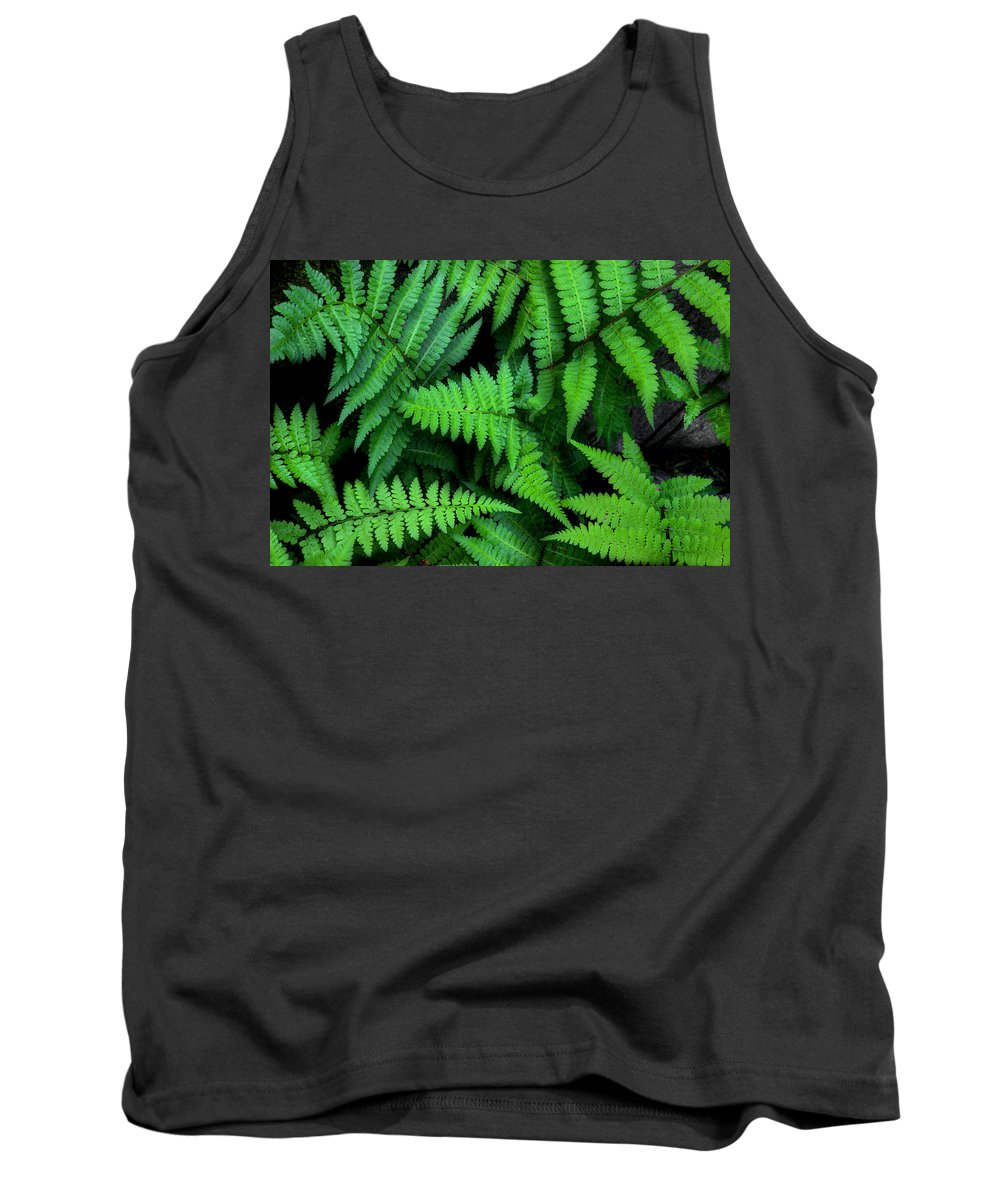 Ferns Tank Top featuring the photograph Ferns Along The River by Michael Eingle