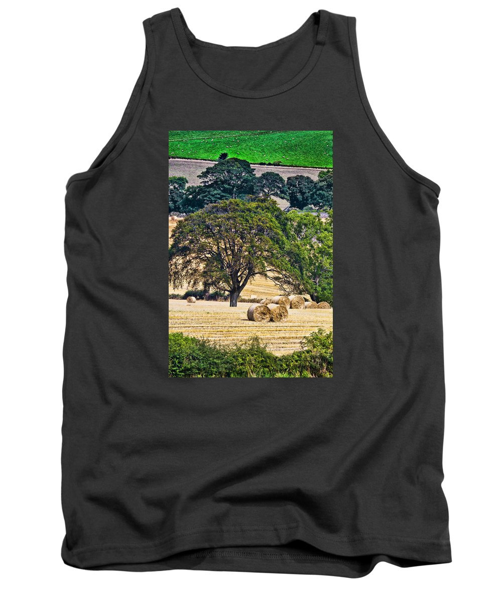 Landscape Tank Top featuring the photograph Field Of Hay by Marcia Colelli