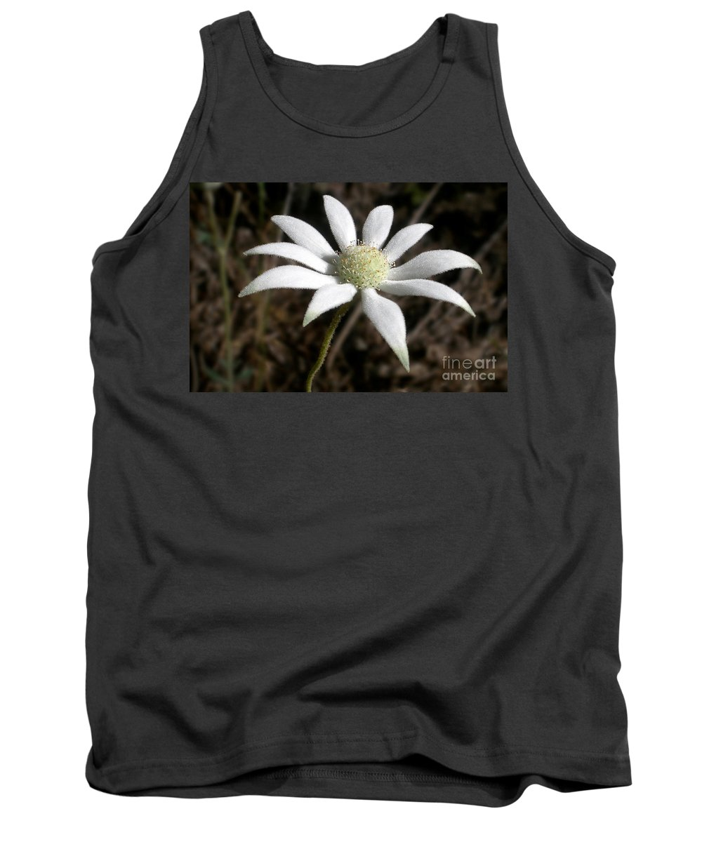 Photography Tank Top featuring the photograph Flannel Flower by Kaye Menner