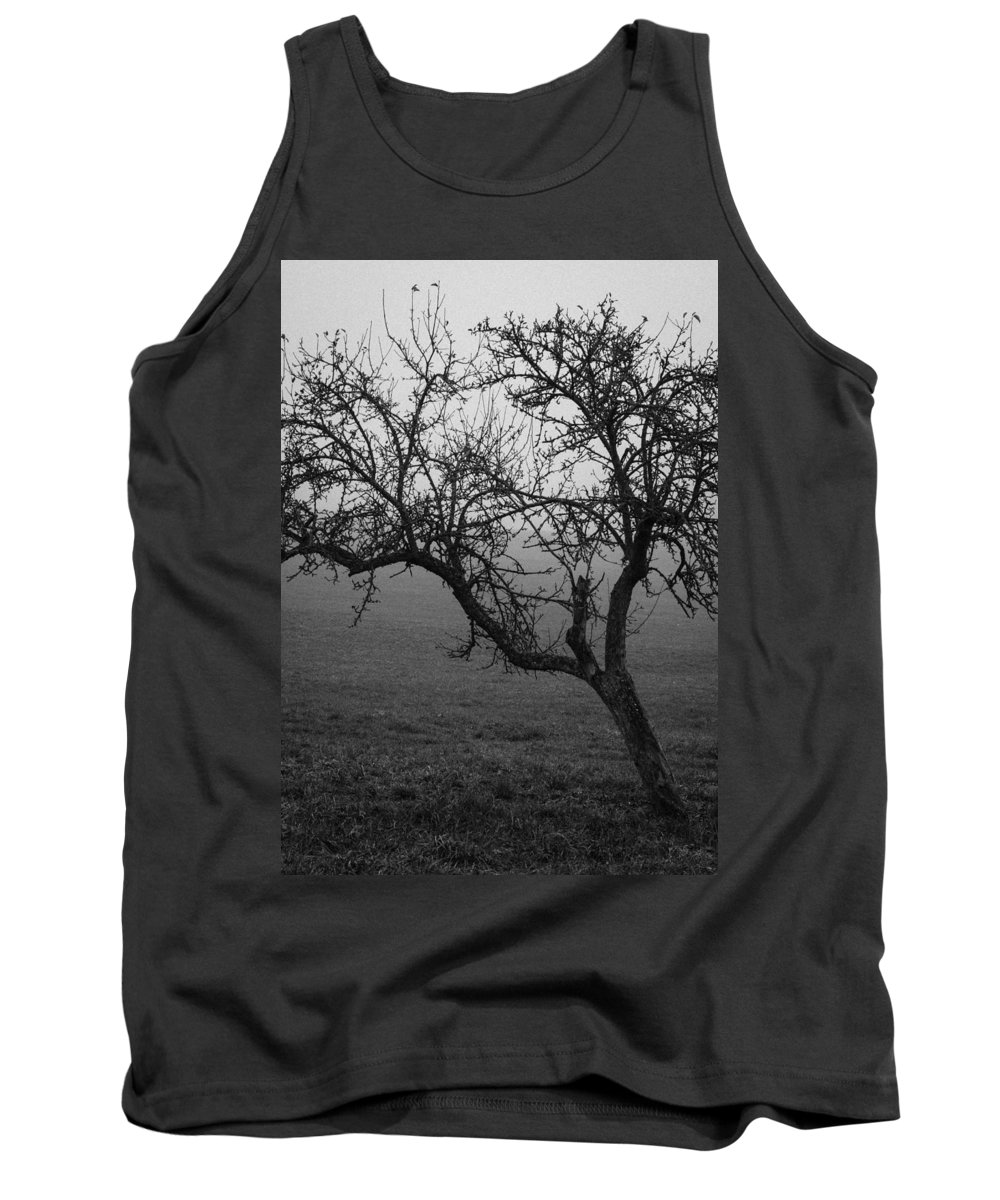 Fog Tank Top featuring the photograph Fog And Solitude by Miguel Winterpacht