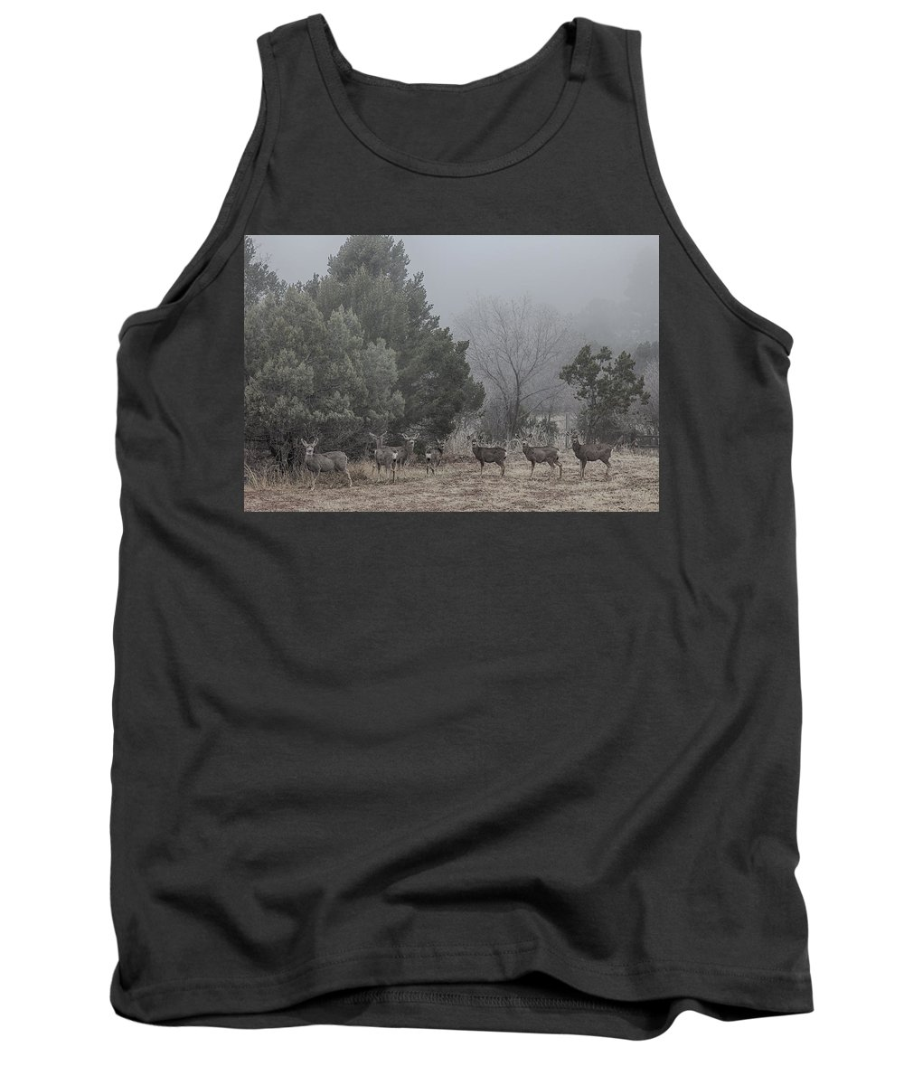 Deer Tank Top featuring the photograph Foggy Morning by Diana Powell