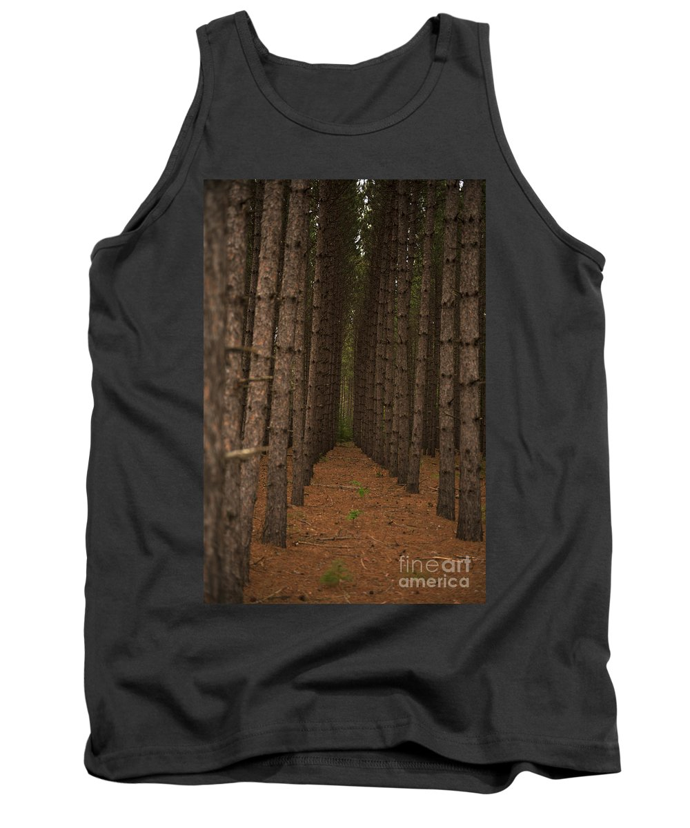 Nina Stavlund Tank Top featuring the photograph Forest Soldiers... by Nina Stavlund