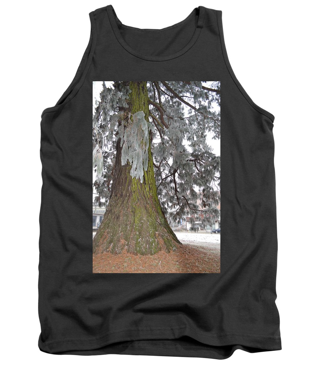 Nature Tank Top featuring the photograph Frost On The Leaves by Felicia Tica