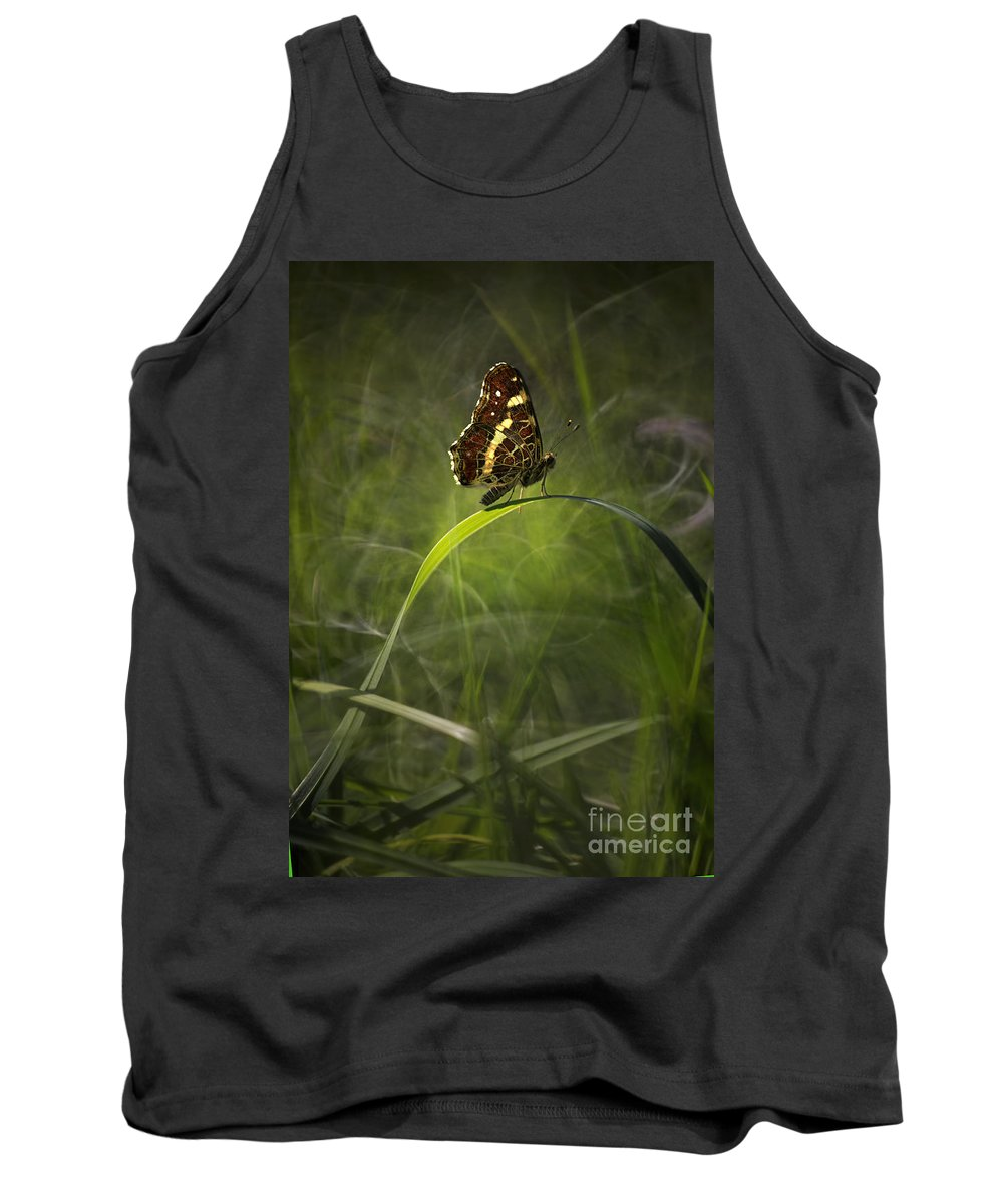 Grass Tank Top featuring the photograph Garden Stories I by Jaroslaw Blaminsky