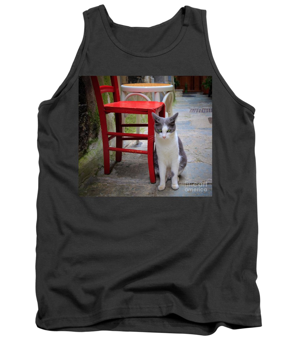 Cinque Terre Tank Top featuring the photograph Gatto Italiano by Inge Johnsson