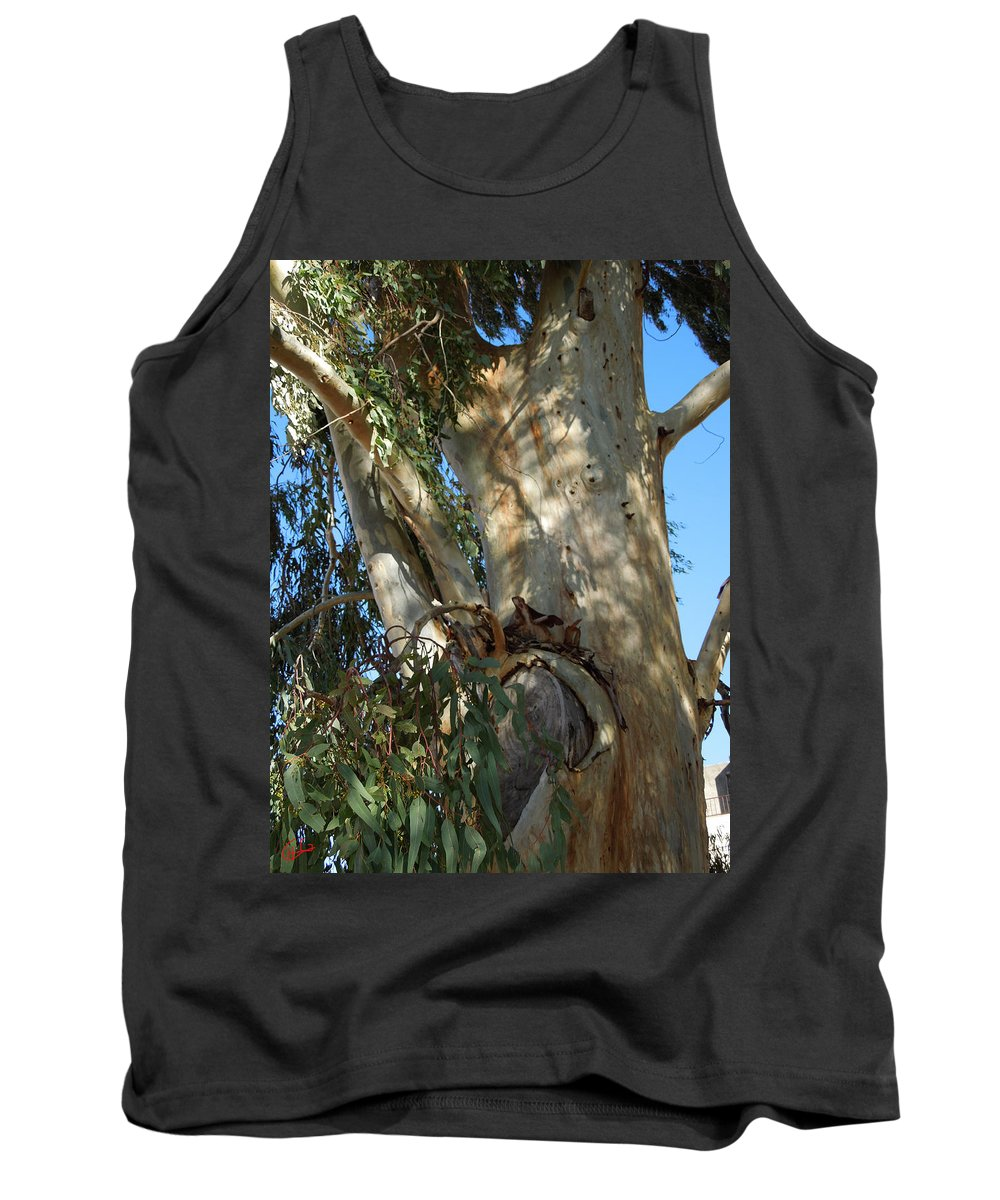 Colette Tank Top featuring the photograph Gentle Calypso Three In Cantoria Village Spain by Colette V Hera Guggenheim