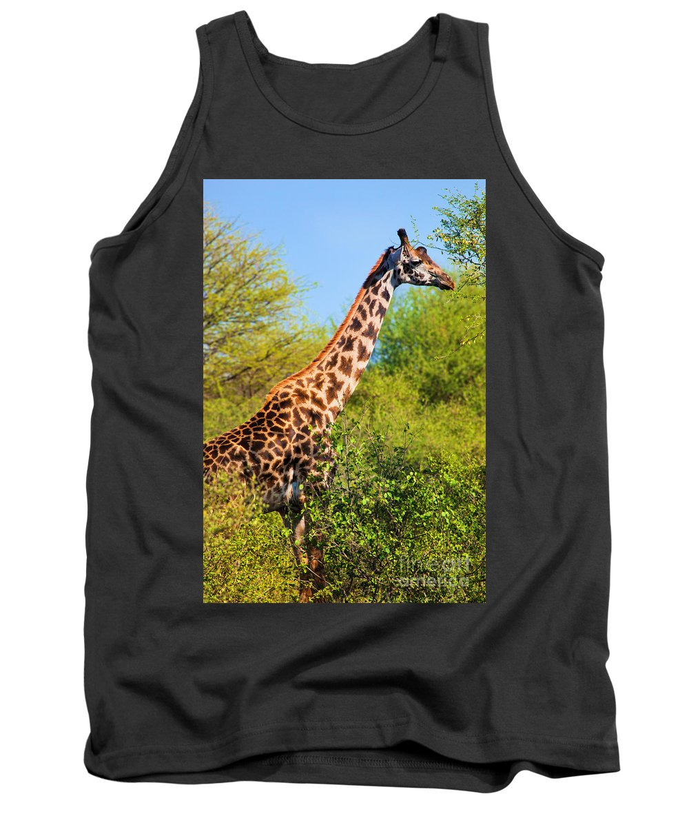 Giraffe Tank Top featuring the photograph Giraffe Among Trees. Safari In Serengeti. Tanzania by Michal Bednarek